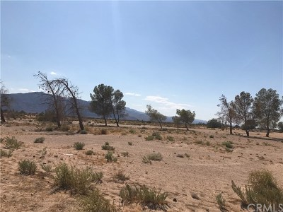 Newberry Springs Residential Lots & Land For Sale: 32990 Harvard Road