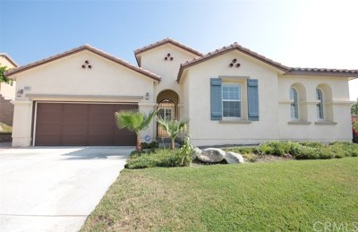 Rancho Cucamonga Single Family Home For Sale: 12638 Del Rey Drive