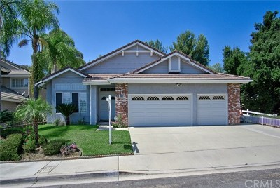 Chino Hills Single Family Home For Sale: 14306 Pleasant Hill Drive