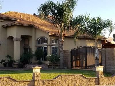 Rialto Single Family Home For Sale: 2585 Plaza Serena Drive