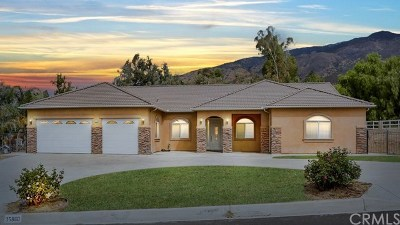 Yucaipa Single Family Home For Sale: 35860 Holly Street