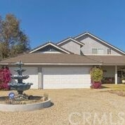 Moreno Valley Single Family Home For Sale: 26770 Ironwood Avenue