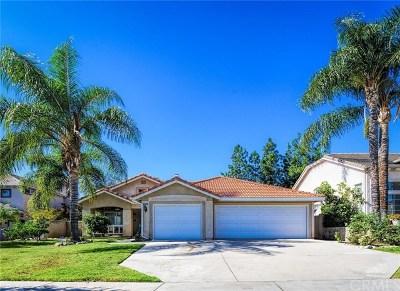 Rancho Cucamonga Single Family Home For Sale: 6420 Terracina Avenue
