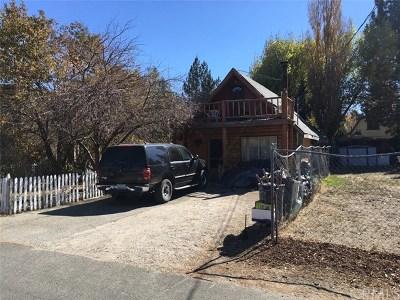 Big Bear Single Family Home For Sale: 1024 W Fairway Boulevard