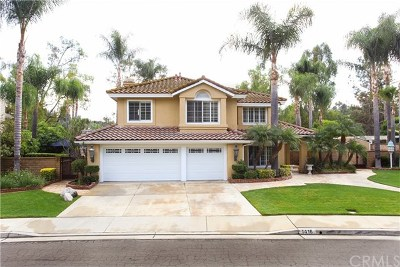 San Dimas Single Family Home For Sale: 1416 Paseo Victoria