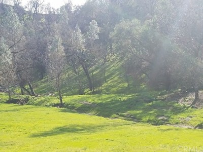 Paso Robles Residential Lots & Land For Sale: 4250 Allen Road #4