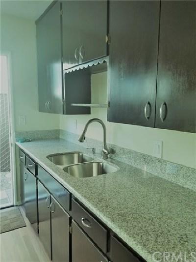 Redlands Single Family Home For Sale: 834 Tribune Street