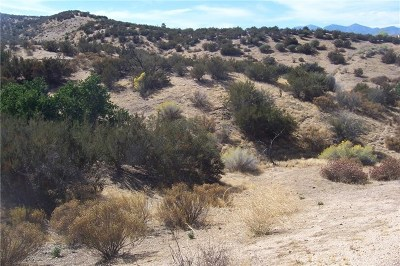 Hesperia Residential Lots & Land For Sale: Cascade Road