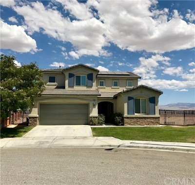 Victorville Single Family Home For Sale: 12663 High Vista Street