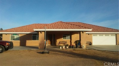 Hesperia Single Family Home For Sale: 17904 Hercules
