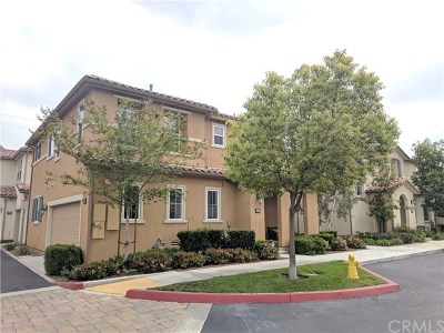 Upland Single Family Home For Sale: 2453 Bruin Place