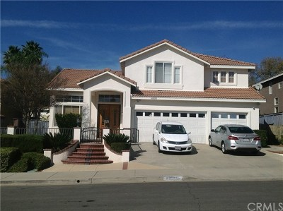 Murrieta Single Family Home For Sale: 40015 Tinderbox Way
