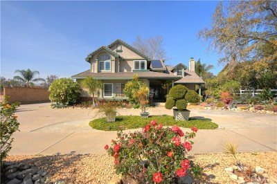 Rancho Cucamonga Single Family Home For Sale: 6742 Etiwanda Avenue