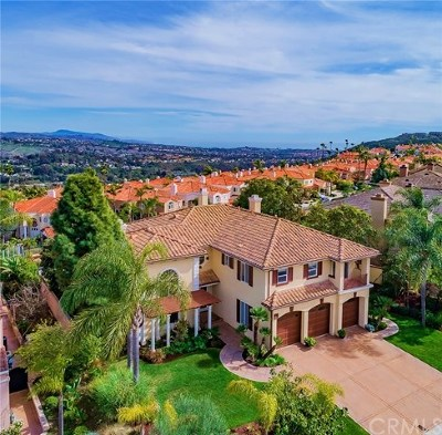 Laguna Niguel  Single Family Home For Sale: 6 Coronado Pointe