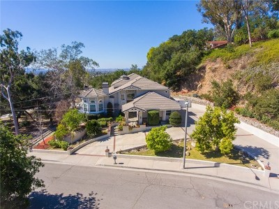 Glendora Single Family Home For Sale: 845 N Banna Avenue
