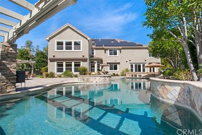 Coto de Caza Single Family Home For Sale: 7 Endicott