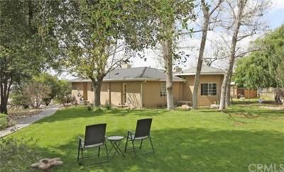 Yucaipa Single Family Home For Sale: 33870 Avenue H