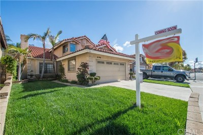 Chino Hills Single Family Home For Sale: 6196 Sunny Meadow Lane