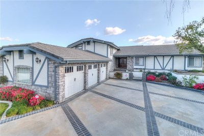 San Dimas Single Family Home For Sale: 1193 Edinburgh Road