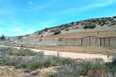 Hesperia Residential Lots & Land For Sale: 14065 Summit Valley Road