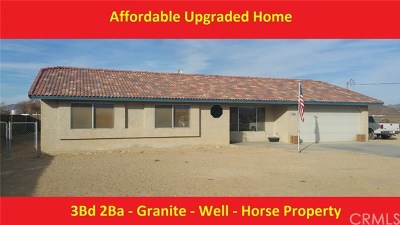 Lucerne Valley Single Family Home For Sale: 33550 Wilderness Lane