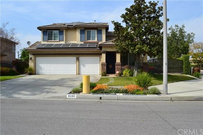 Chino Single Family Home For Sale: 6690 Meadowlark Street