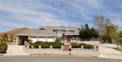 Apple Valley Single Family Home For Sale: 16433 Viho Court