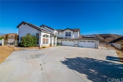 Colton Single Family Home For Sale: 3037 Michelle Drive