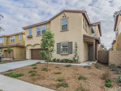 Chino Single Family Home For Sale: 3997 Peppertree Lane