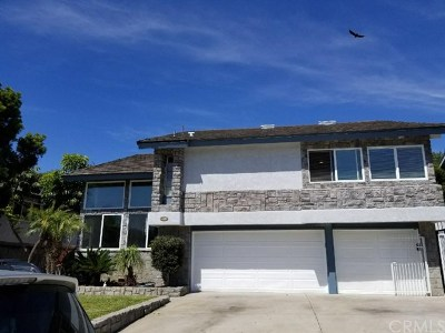 Dana Point Single Family Home For Sale: 32811 Mermaid Cir