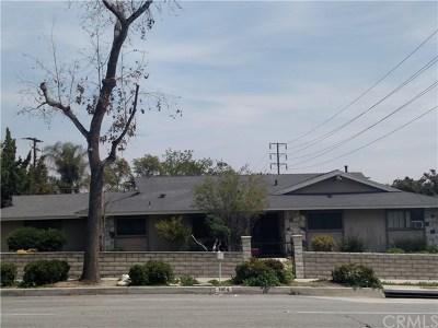 Upland Single Family Home For Sale: 1604 N San Antonio Avenue