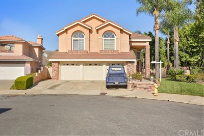 Chino Hills Single Family Home For Sale: 13985 Plum Hollow Lane