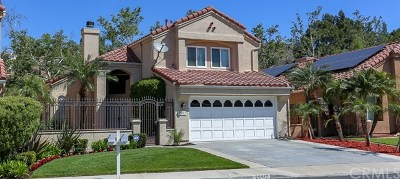 Yorba Linda Single Family Home For Sale: 25517 Palermo Way