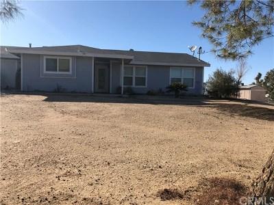 Victorville Single Family Home For Sale: 12150 Beaver Avenue