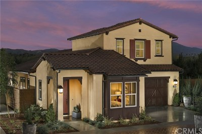 Irvine Single Family Home For Sale: 170 Palencia