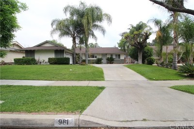 Upland Single Family Home For Sale: 981 W 8th Street