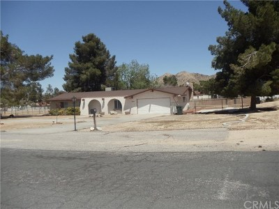 Apple Valley Single Family Home For Sale: 19402 Kinai Road