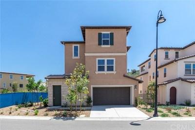 Diamond Bar Single Family Home For Sale: 20656 Shepherd Hills Drive