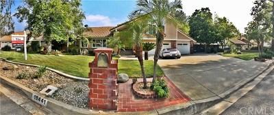 Rancho Cucamonga Single Family Home For Sale: 10441 Poplar Street