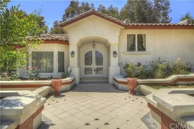 Diamond Bar Single Family Home For Sale: 2435 Clear Creek Lane