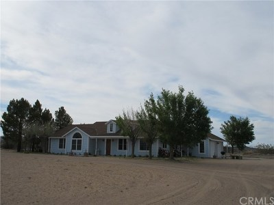 Newberry Springs Single Family Home For Sale: 45948 Riverside Road