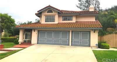 San Dimas Single Family Home For Sale: 1926 Avenida Monte