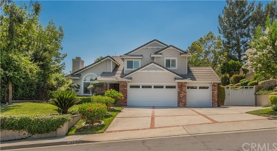 San Dimas Single Family Home For Sale: 1773 Calle Catalina