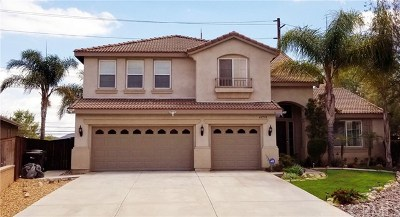 Murrieta Single Family Home For Sale: 41710 Grand View Drive