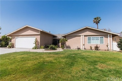 Norco Single Family Home For Sale: 5060 Pinto Place