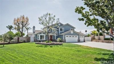 Rancho Cucamonga Single Family Home For Sale: 5950 Villa Drive