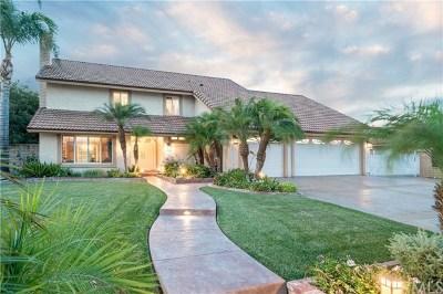 Rancho Cucamonga Single Family Home For Sale: 9602 Apricot Avenue