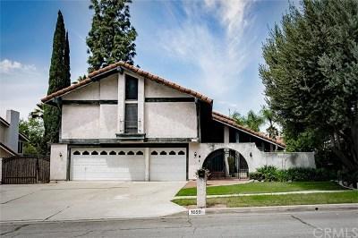 Upland Single Family Home For Sale: 1659 Glenwood Avenue