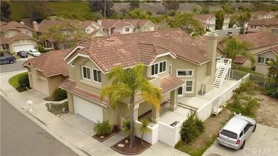 San Clemente Single Family Home For Sale: 48 Albergar