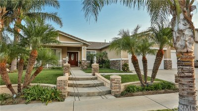 Rancho Cucamonga Single Family Home For Sale: 13941 San Segundo Drive